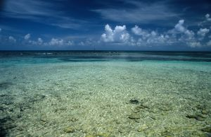 Outer Caye 2